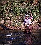 Chuck Edghill Fishing for hickory shad in the Rappahannock River in Virginia. May 1986.