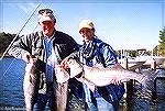 Bob Blatchley and wife Jan show a nice catch of fall striped bass from the back bays at Ocean City, Maryland.